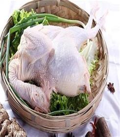 六盘水老母鸡