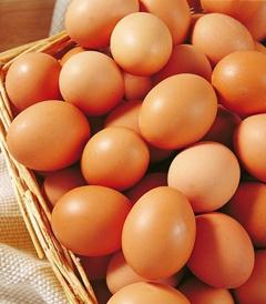 上海洋鸡蛋
