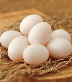 六盘水鸽子蛋